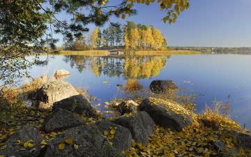 Картинка природа реки озера озеро деревья осень