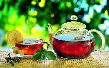 Зеленая чашка с чаем скачать