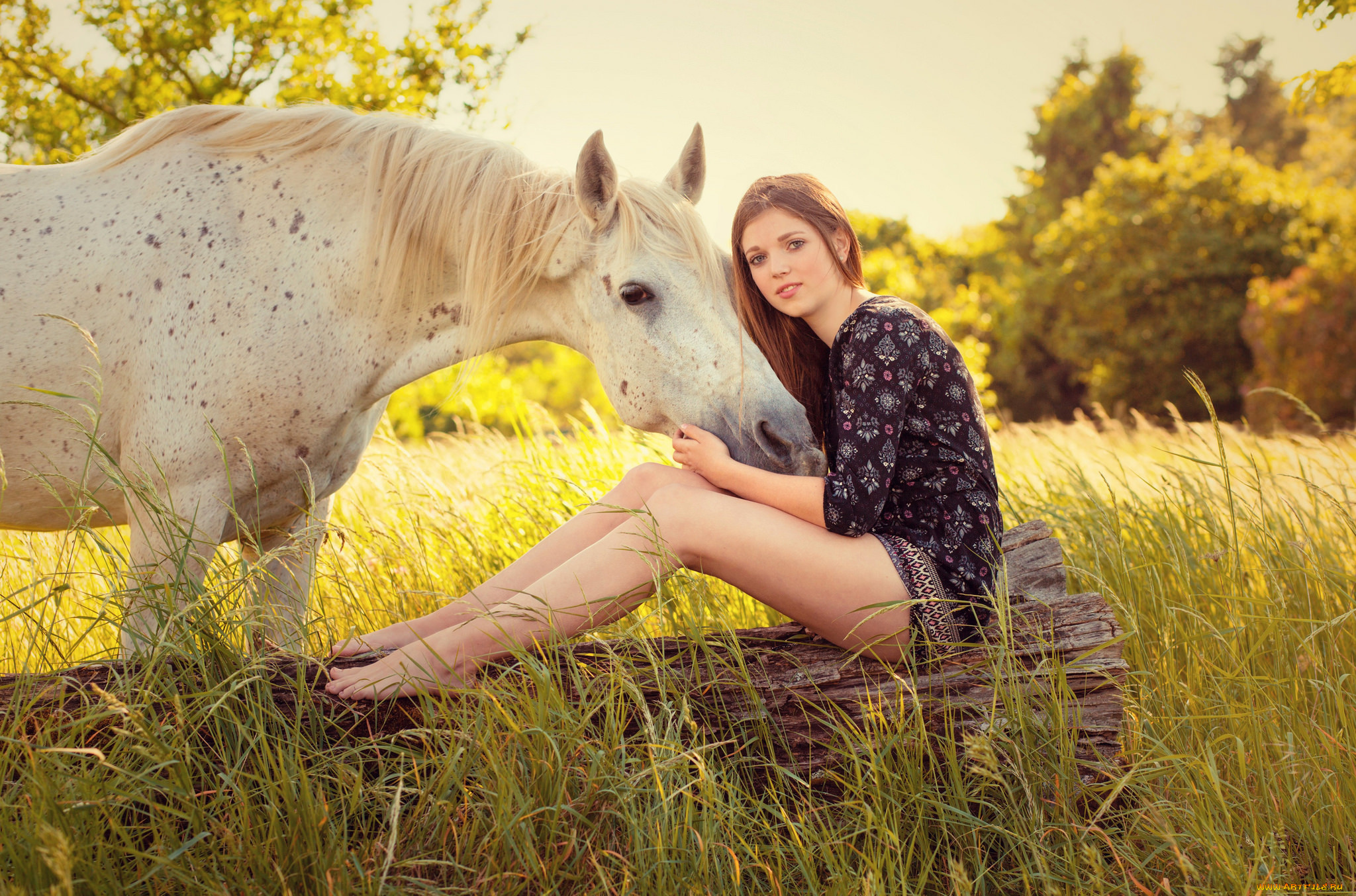 девушка лошади  № 1819064 без смс