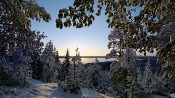 Картинка природа зима снег