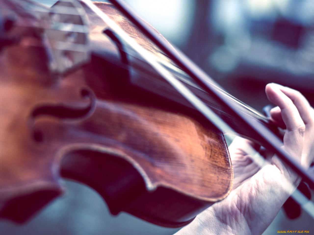 работы картинки скрипка и смычок на телефон отнимают