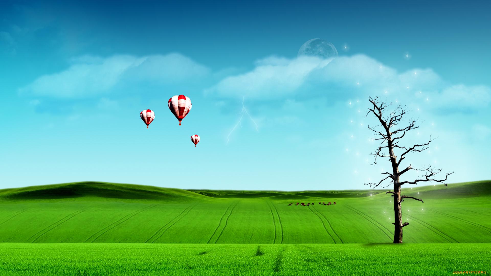 поле дерево  № 3020598 бесплатно