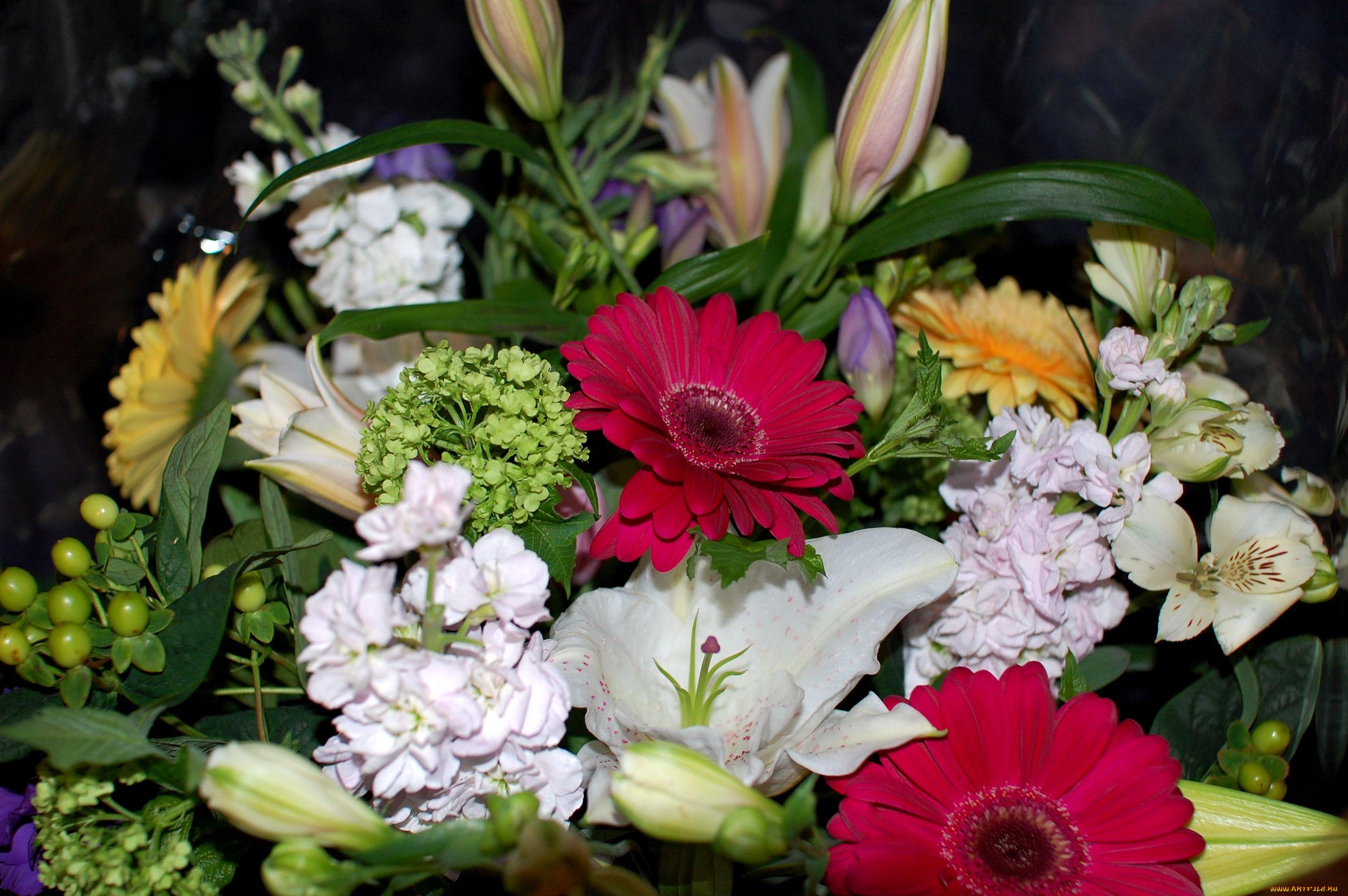 Букет цветов фото дома, букет алых роз