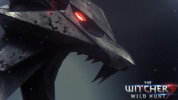 Картинка видео игры the witcher wild hunt