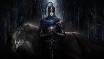 Картинка видео+игры ~~~другое~~~ boss artorias броня knight воин арт шлем волк dark souls of the abyss