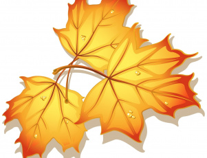 обоя векторная графика, природа , nature, клен, фон, листья