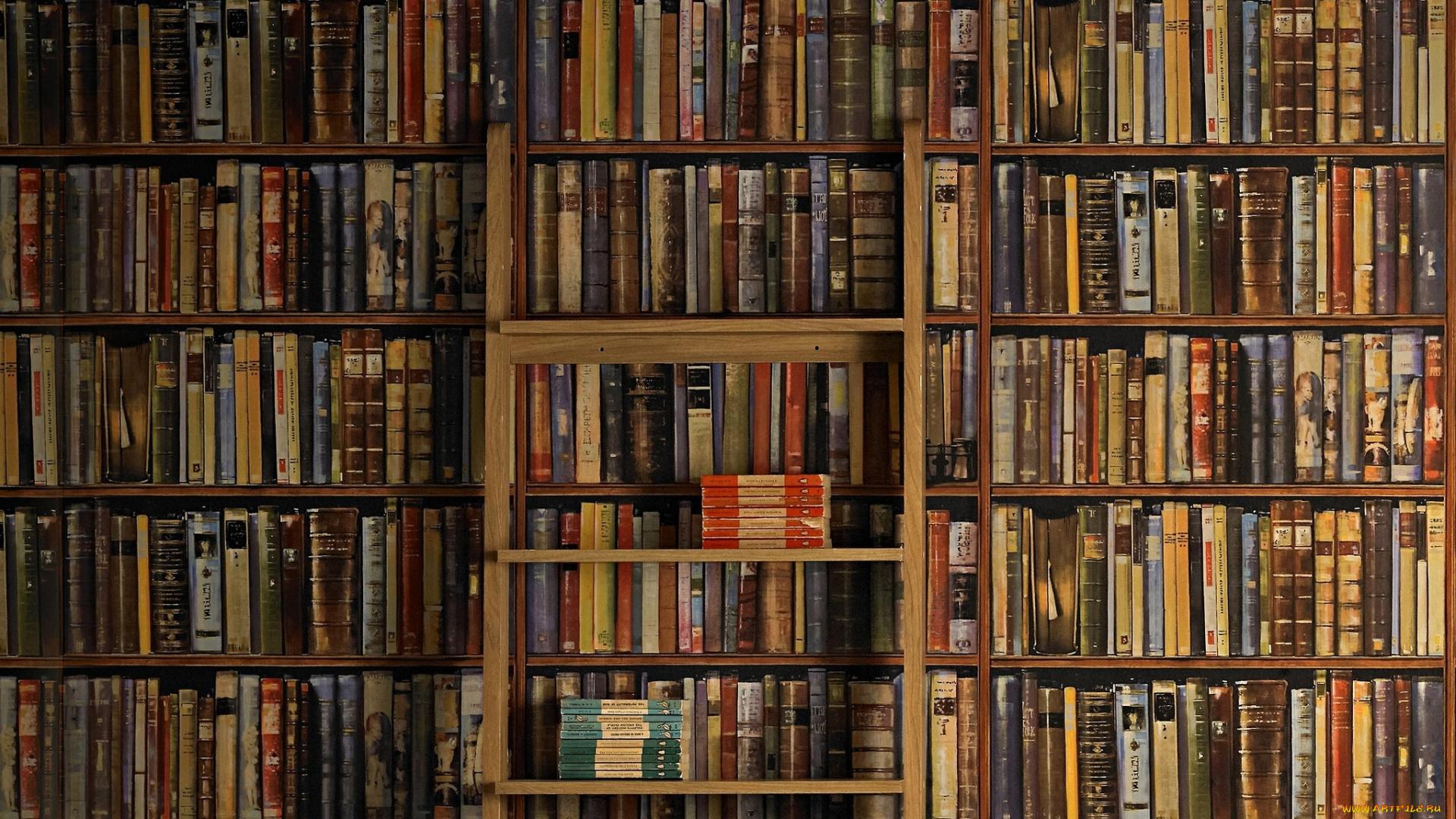 картинки книжных полок на рабочий стол привнесите