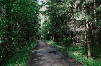 Картинка природа дороги тракт