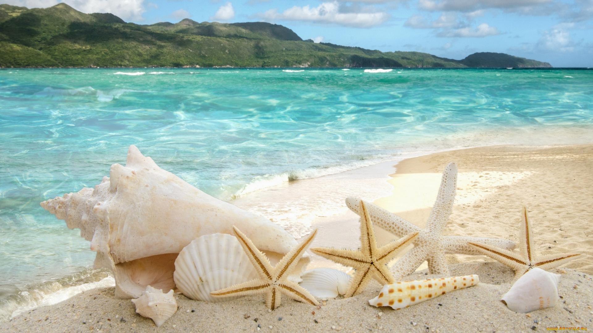 природа море пляж солнце  № 970602 загрузить
