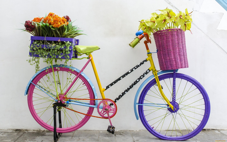 Обои для рабочего стола велосипед с цветами