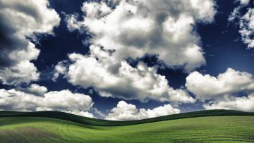 Картинка природа поля облака