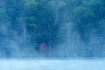 Картинка природа реки озера туман река склон озеро лес осень