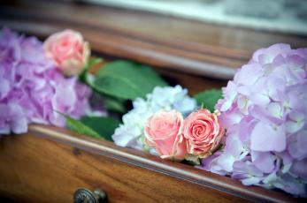 Картинка цветы разные+вместе розы гортензия