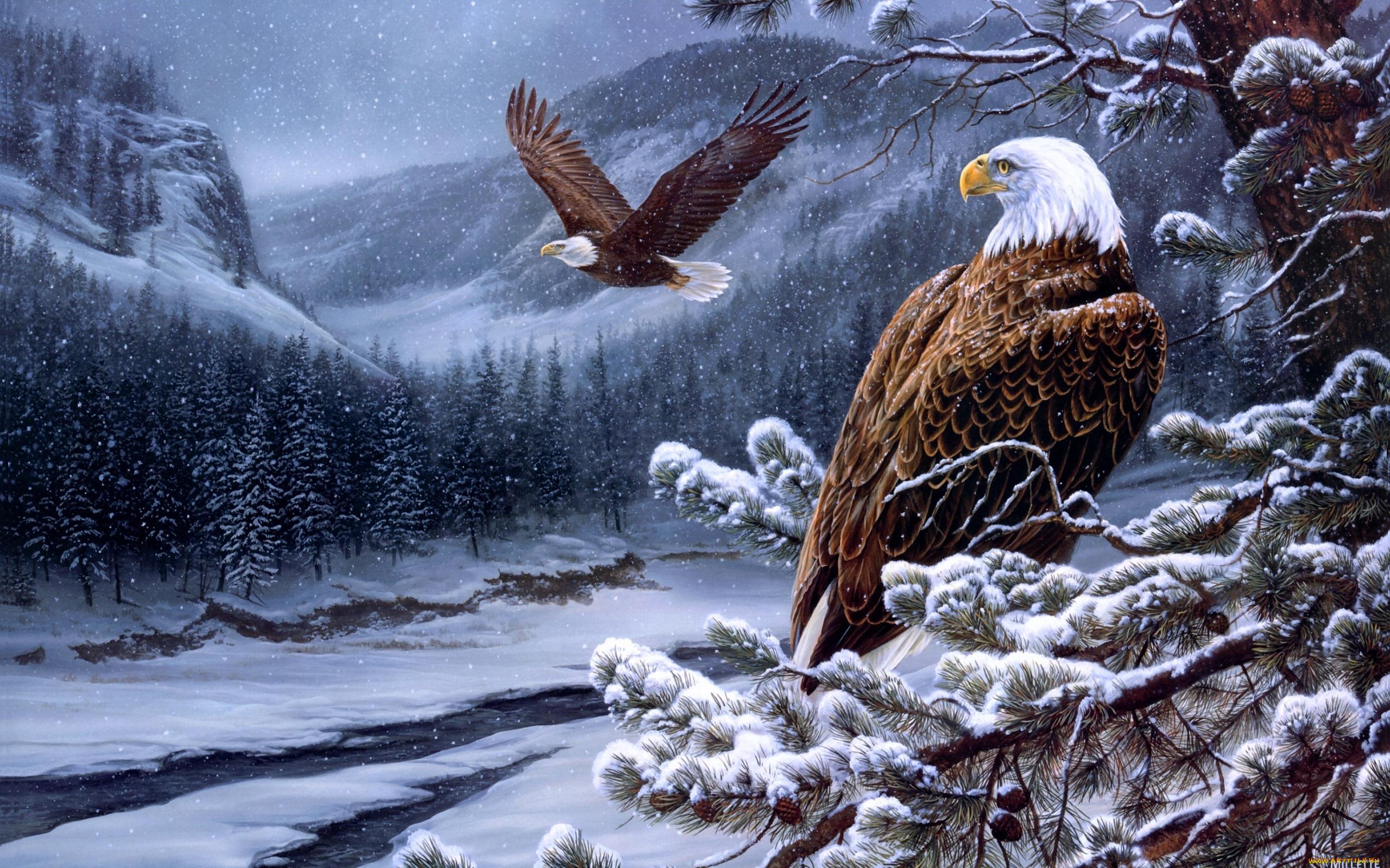 Юбилеем мужчине, открытки с годом орла