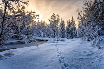 Картинка природа зима закат речка ручей норвегия
