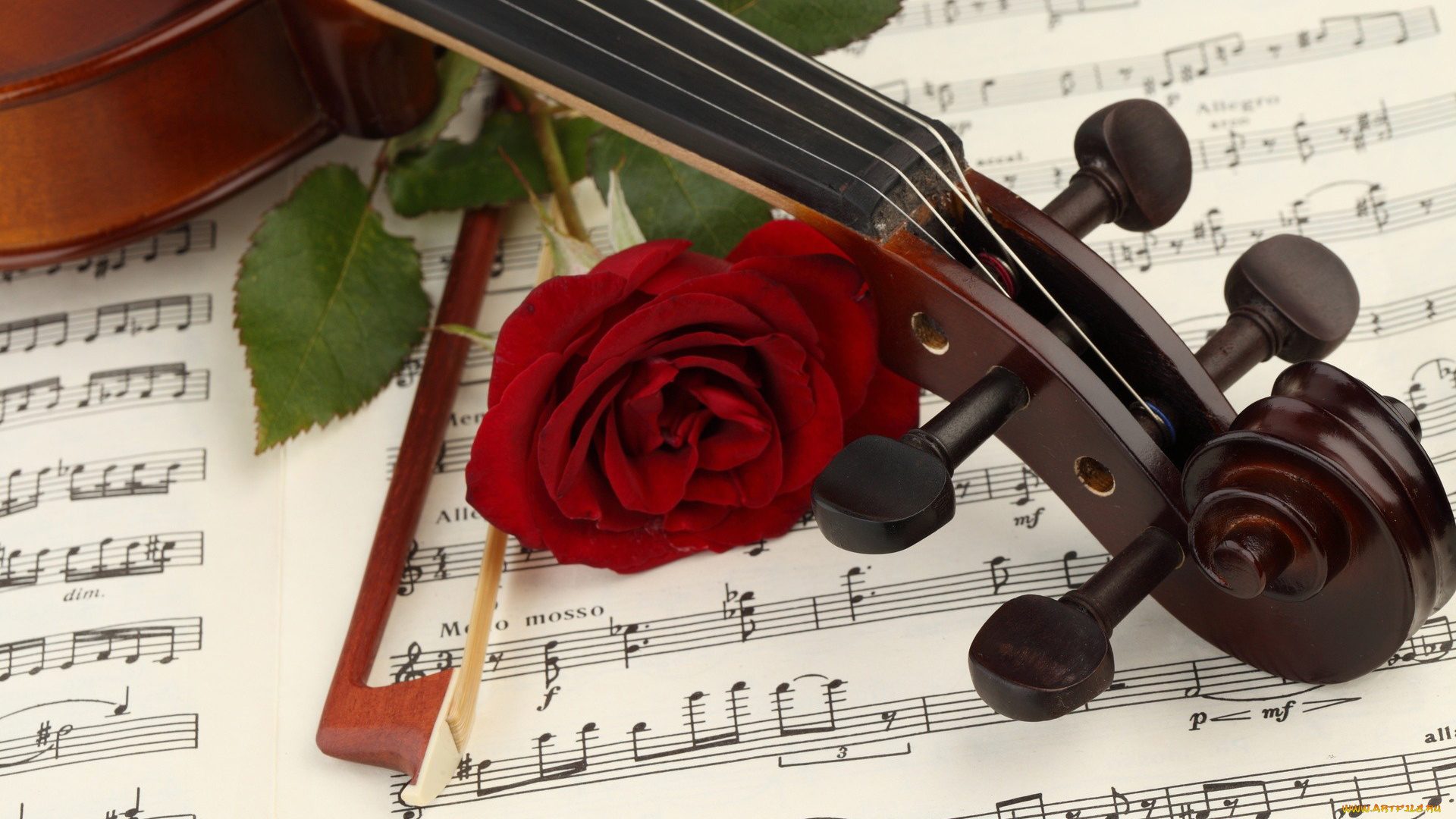 Картинка, открытки музыкальных инструментов красивые