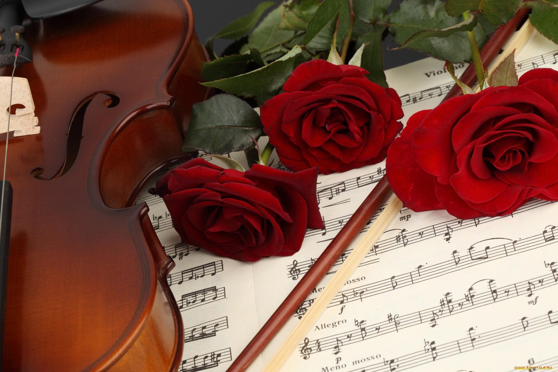 Цветами крючком, музыкальные цветы картинки