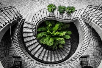 Картинка интерьер холлы +лестницы +корридоры urban explorations architecture kevin huan stair san francisco embarcadero city california black and white travel staircase