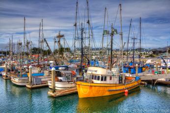 Картинка корабли баркасы+ +буксиры рыболовы