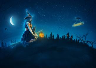обоя праздничные, хэллоуин, шляпа, полет, метла, кот, фон, девушка