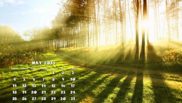 обоя календари, природа, свет, лес