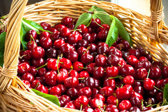 Картинка еда вишня +черешня корзина фрукты черешня basket fruit cherries