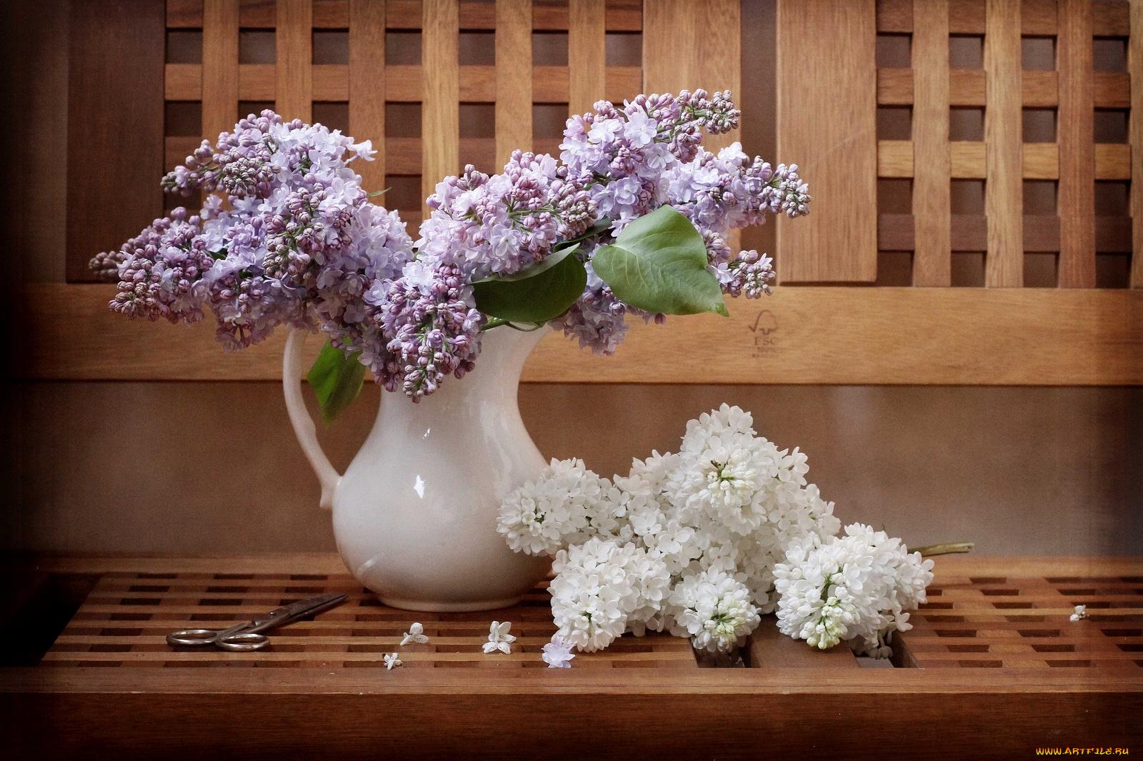природа цветы ваза сирень  № 3063883 загрузить