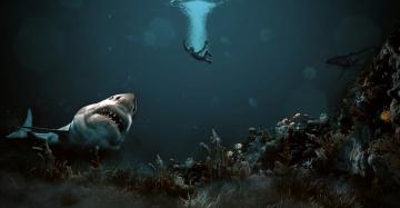 Картинка разное компьютерный+дизайн фон человек акула океан