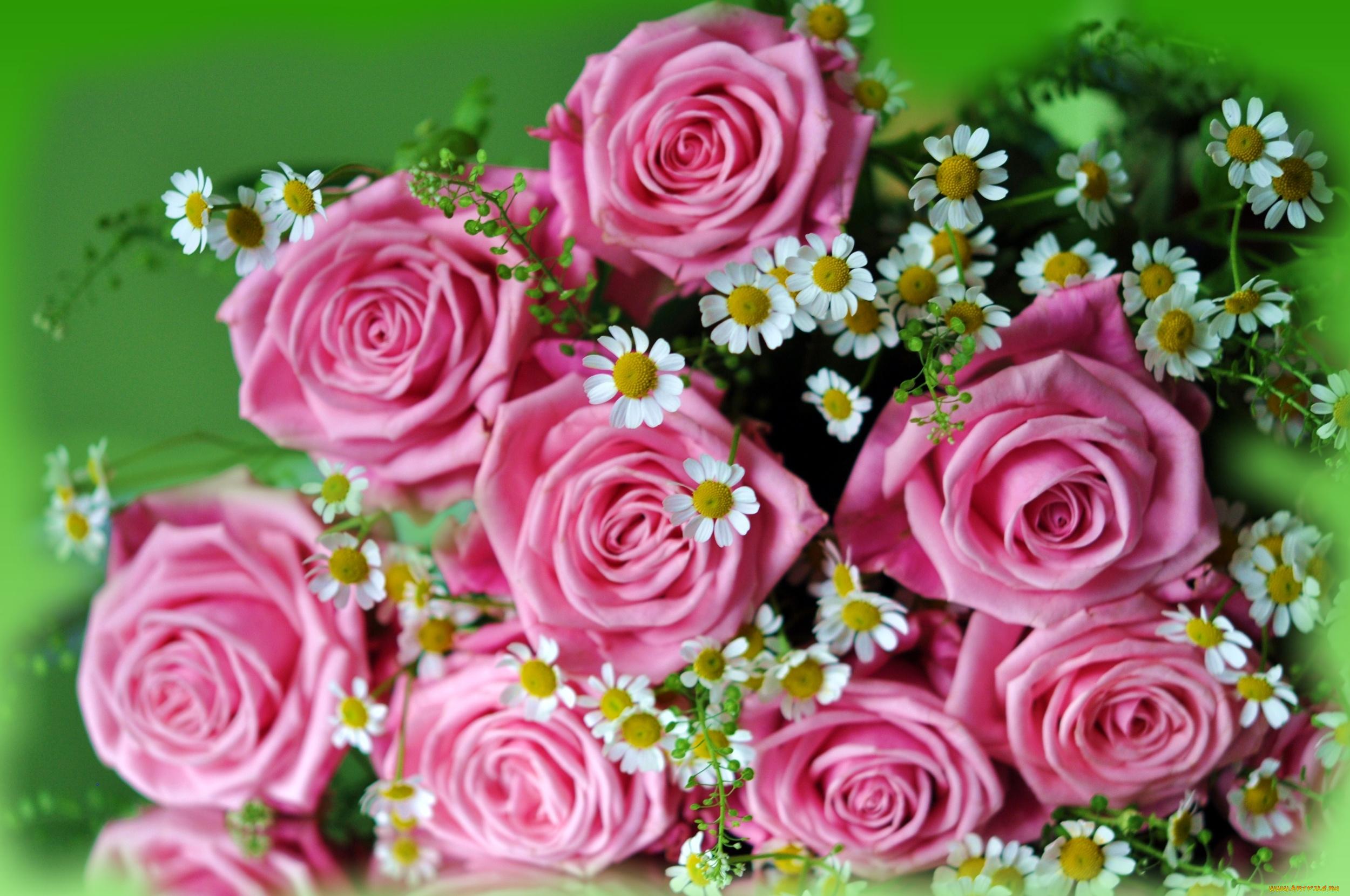 Для, смотреть фото открыток с цветами