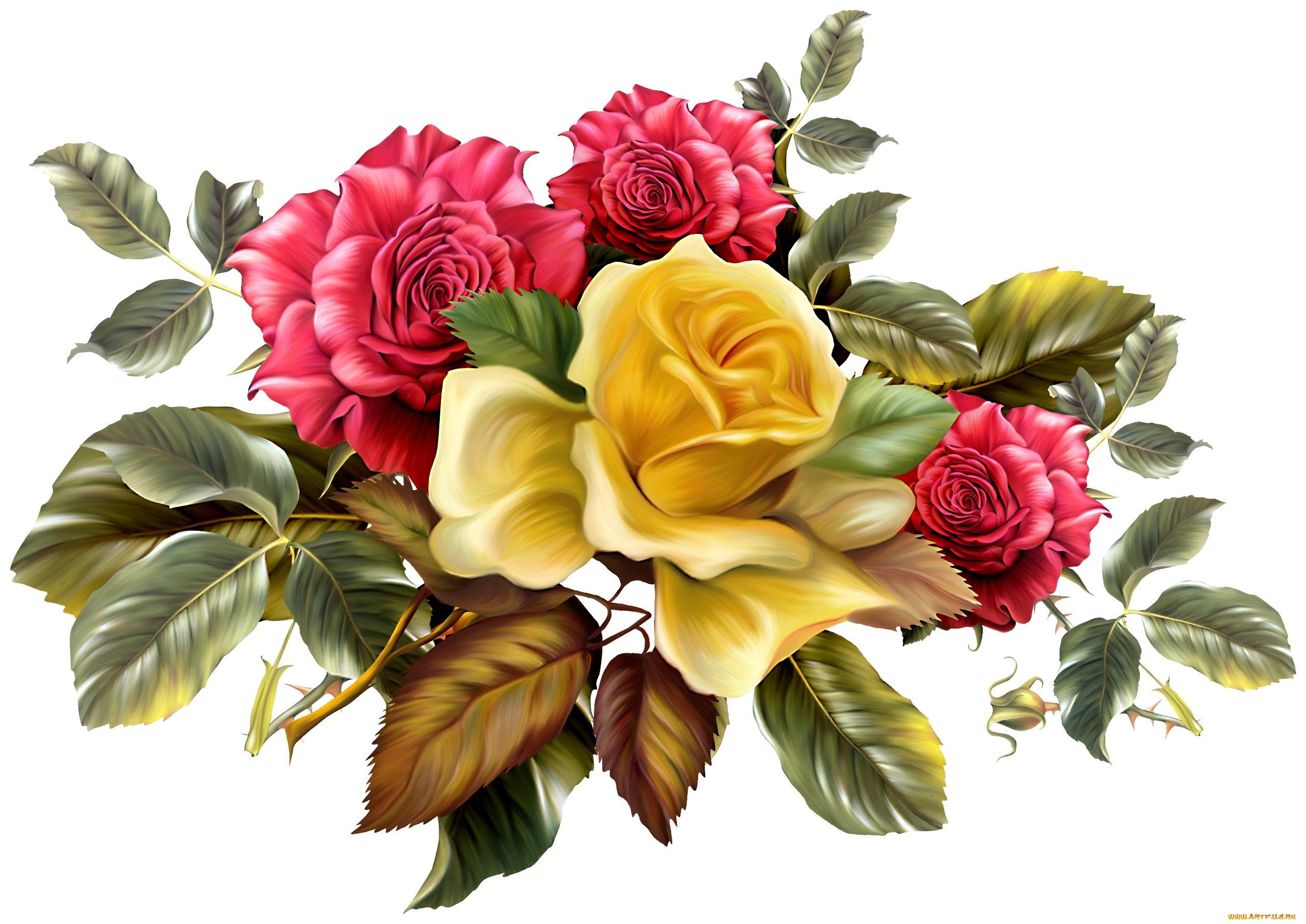 Картинки, фотошоп картинки цветы