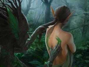 обоя фэнтези, эльфы, растения, рисунок, деревья