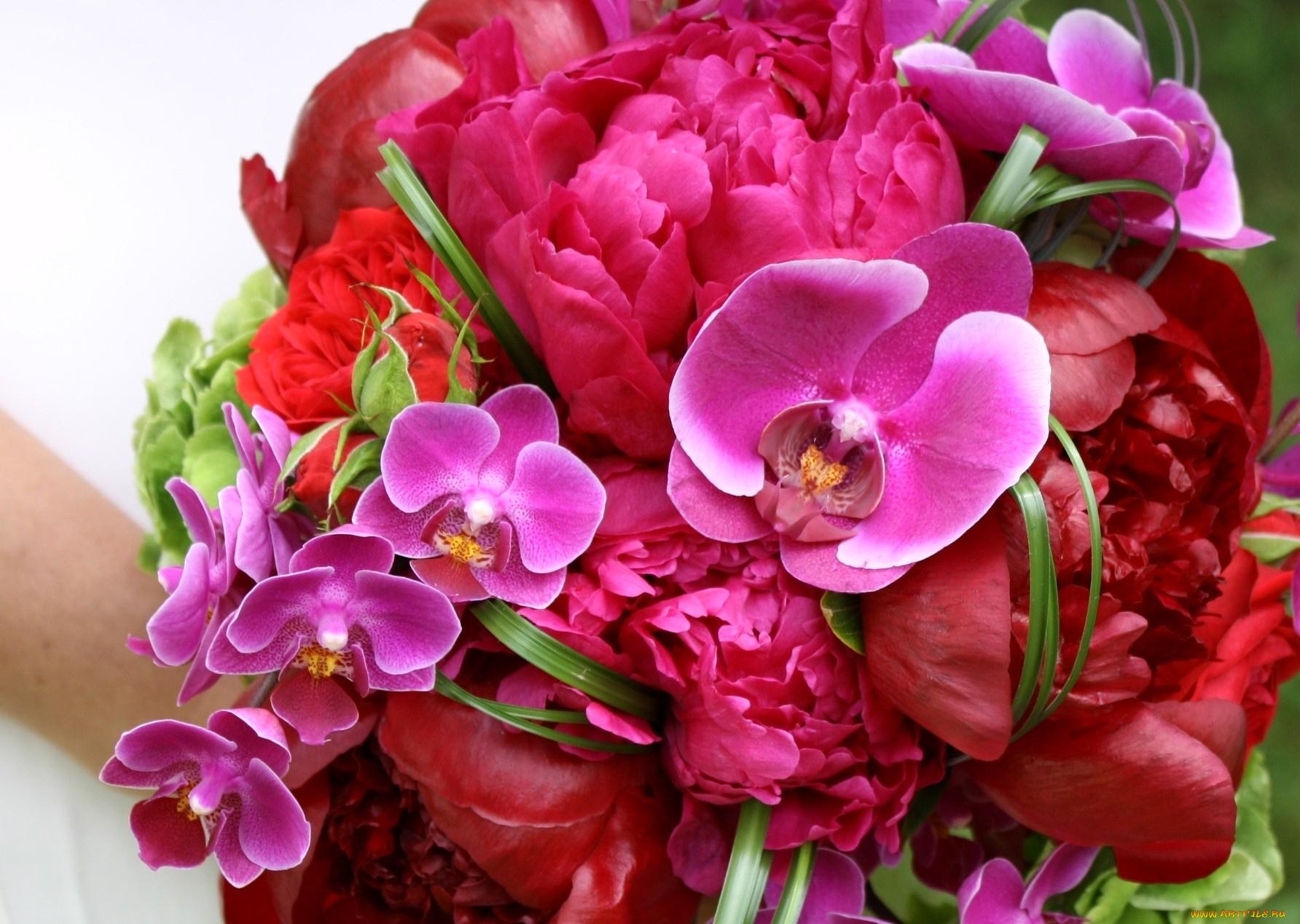 Букет орхидей открытка, картинки