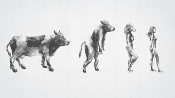 Картинка юмор приколы эволюция
