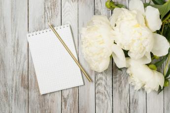 обоя цветы, пионы, блокнот, белый