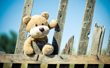 обоя разное, игрушки, мягкая, забор, игрушка, медвежонок