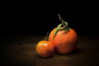 Картинка еда цитрусы апельсин мандарин