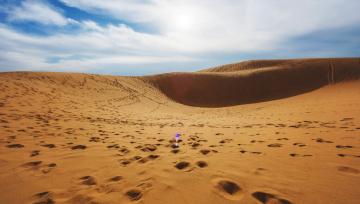 Картинка природа пустыни дюны следы