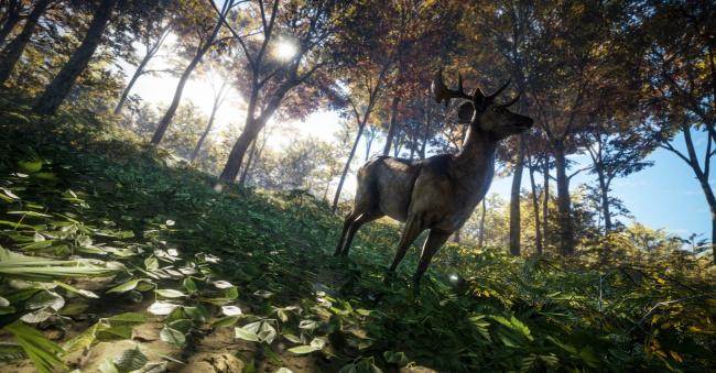 Download the hunter 2012 full version download game gratis.