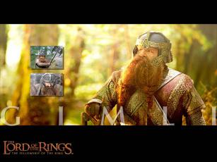 обоя волосатая, каракатица, кино, фильмы, the, lord, of, rings, fellowship, ring