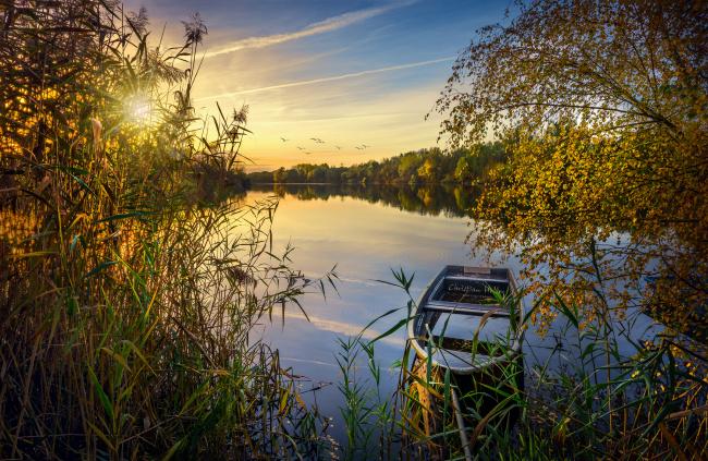 Обои картинки фото корабли, лодки,  шлюпки, река, лес