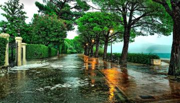 Картинка города -+улицы +площади +набережные деревья фонари дорога дождь