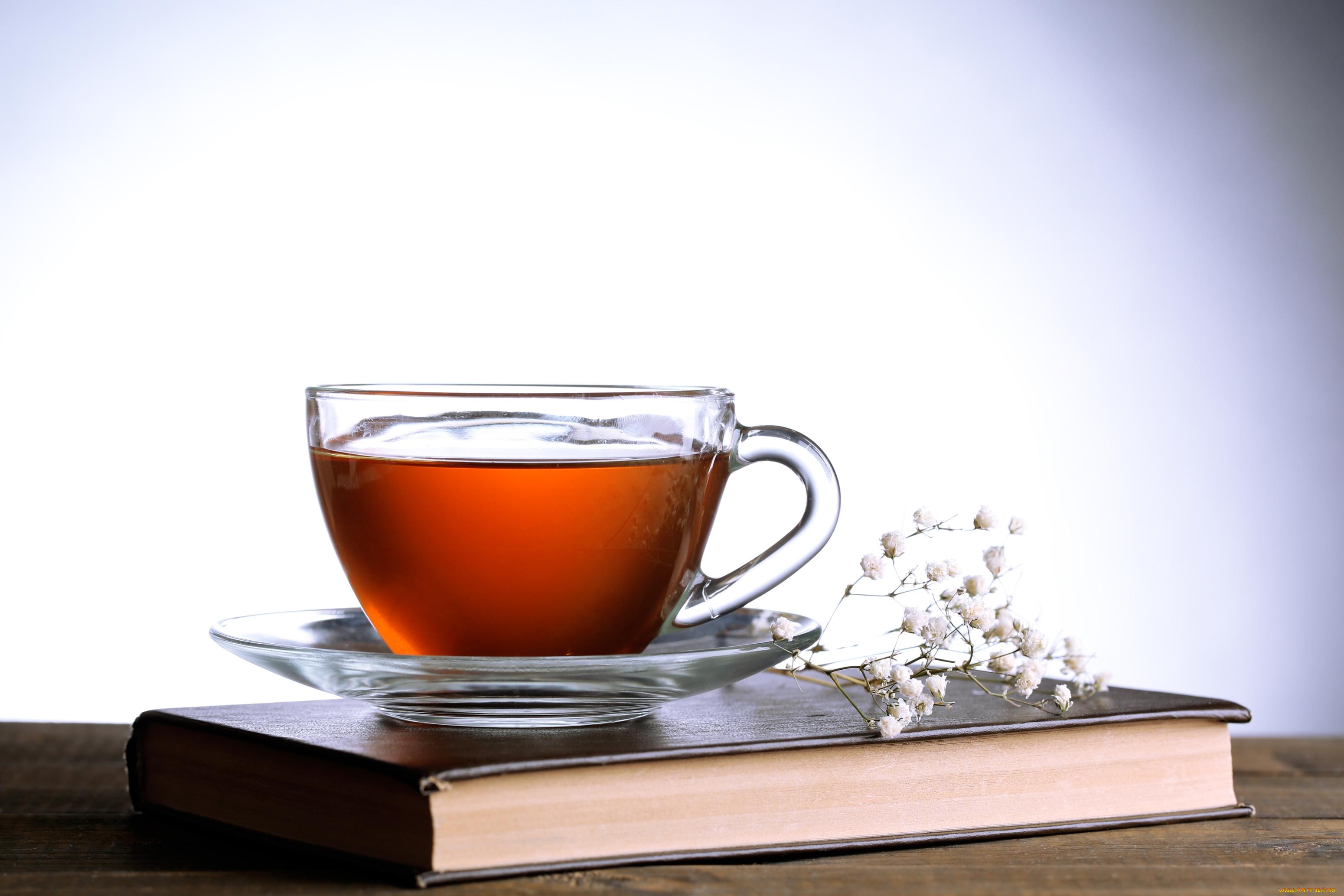 чай кружка стакан tea mug glass загрузить