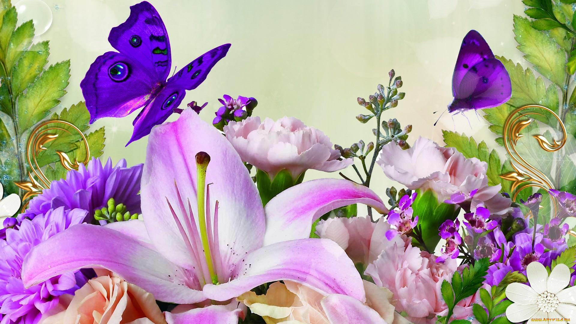 Бабочки подлетающие к цветкам  № 2991692 бесплатно