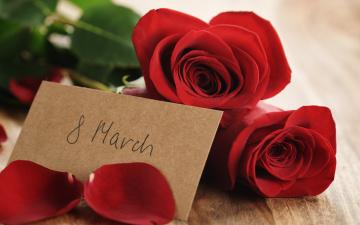 обоя праздничные, международный женский день - 8 марта, красные, розы, red, букет, gift, romantic, 8, марта, лепестки, roses
