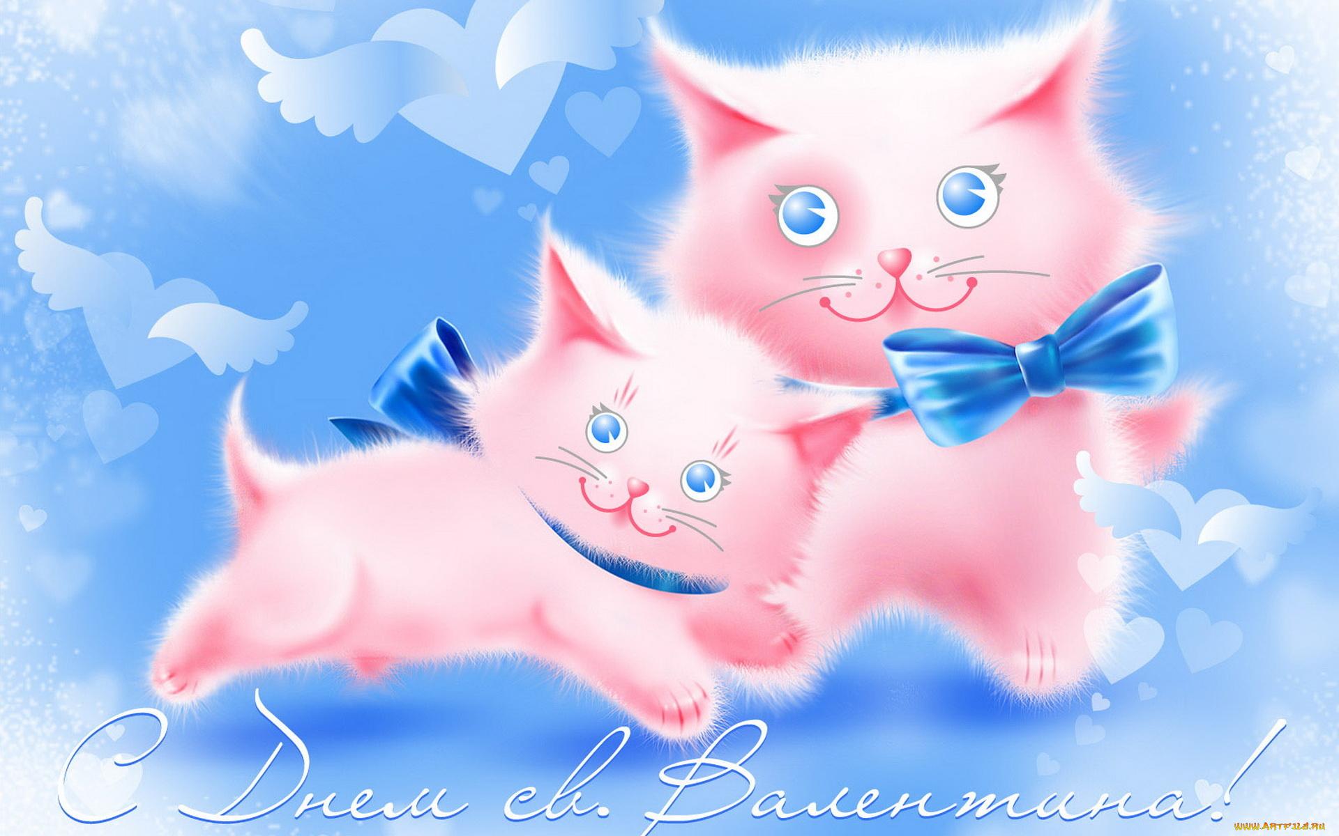 Флеш открытка с котятами