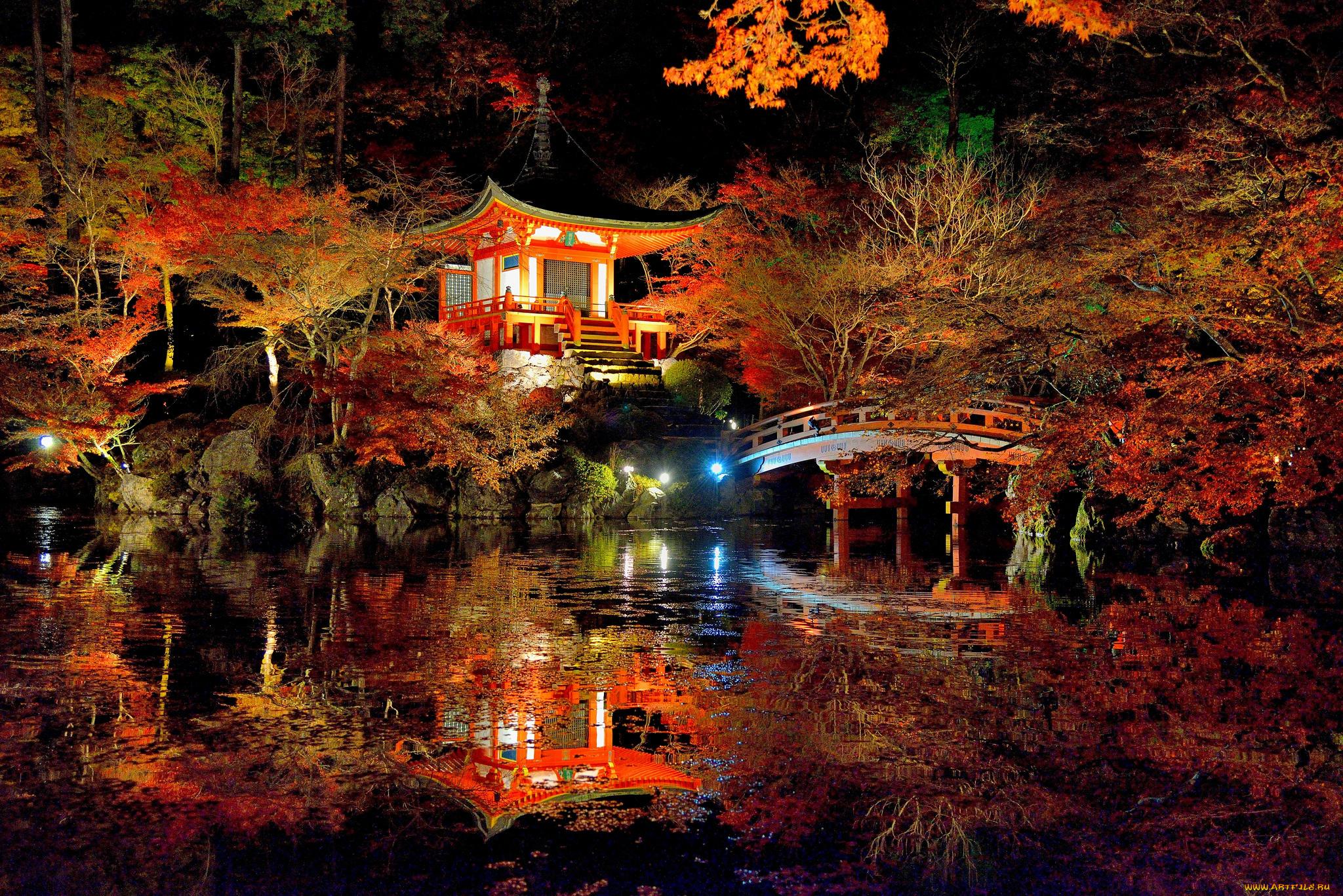 страны архитектура природа деревья ночь  № 3716972 без смс
