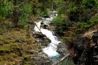 Картинка природа реки озера национальный парк glacier