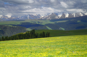 Поля и горы  № 112140 бесплатно