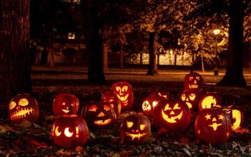 обоя праздничные, хэллоуин, парк, деревья, тыквы, огни