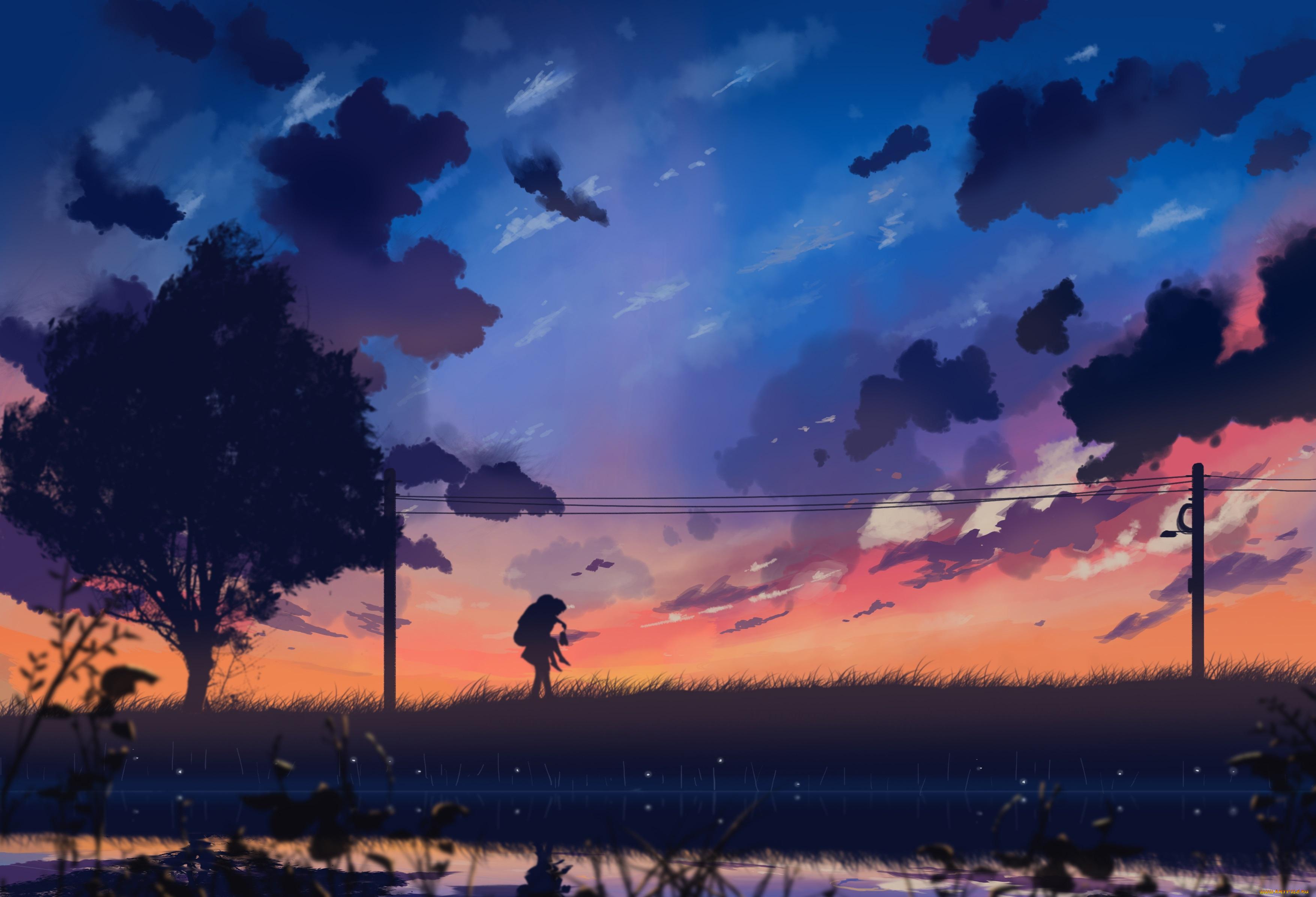аниме, закат, цветочная поляна без смс